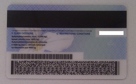 Drivers license 2d barcode format | Free Online Barcode