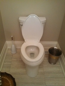 Seat Down Lid Up Toilet