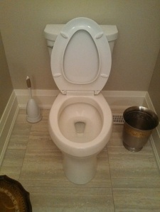Seat Up Lid Up Toilet